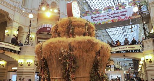 "Autumn Festival in GUM ""Golden Autumn"" Live Action"