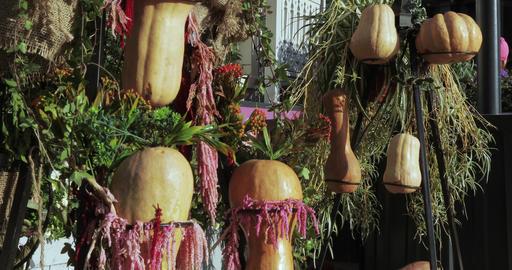"""Decorative design street autumn gastronomic festival """"Golden Autumn"""" Live Action"""