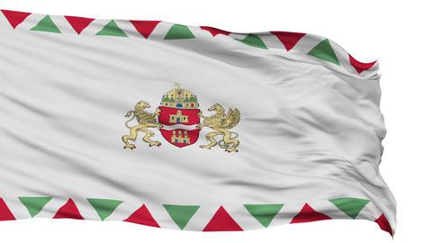 Budapest City Isolated Waving Flag Animation