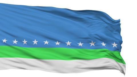 Sanjose City Isolated Waving Flag Animation