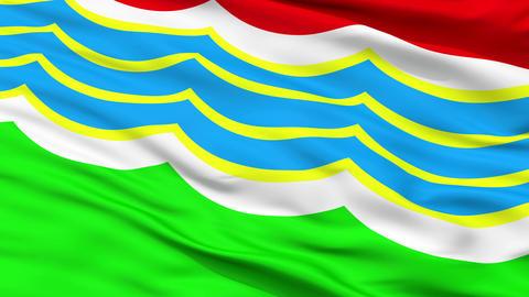 Tiraspol City Close Up Waving Flag Animation