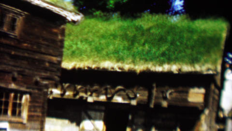 1961: Traditional Danish viking nordic style green living sod roof house Footage