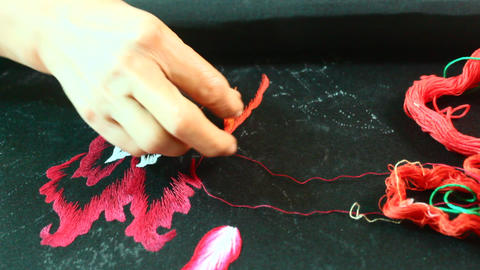 Artisan embroidery painting, asia Live Action