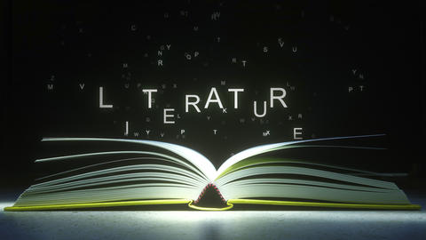 LITERATURE caption made of glowing letters from the open book. 3D animation Footage