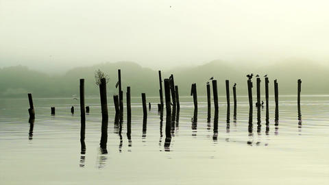 Mysterious and eerie day on the water Footage