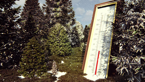 Thermometer Fahrenheit Celsius in forest shows lowering temperature. The concept Animation