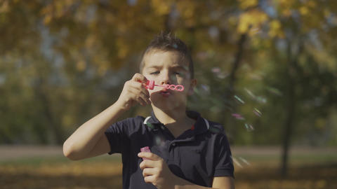 Portrait of the boy blowing a soap bubble in the park. Child is playing outdoors Live Action