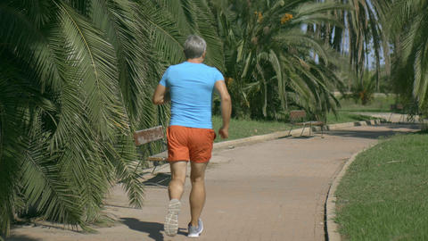 Athletic man in blue tshirt runnings along the tropical park pathway GIF