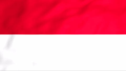 Flag Of Monaco Stock Video Footage
