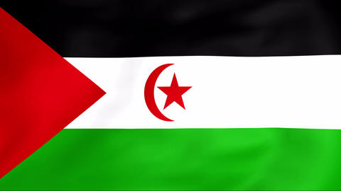 Flag Of Sahara Arab Democratic Republic Animation