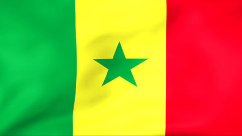 Flag Of Senegal Stock Video Footage