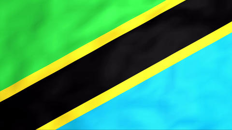 Flag Of Tanzania Stock Video Footage