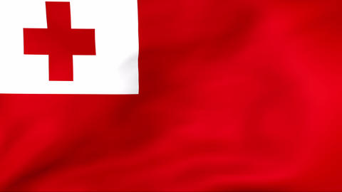 Flag Of Tonga Stock Video Footage