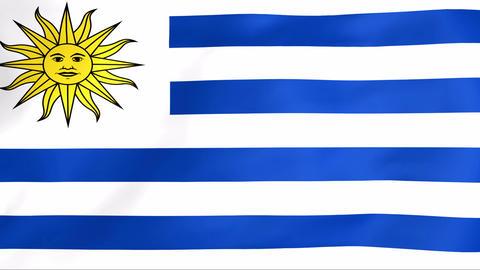 Flag Of Uruguay Stock Video Footage