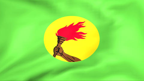 Flag Of Zaire Stock Video Footage
