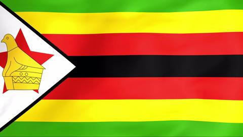 Flag Of Zimbabwe Stock Video Footage