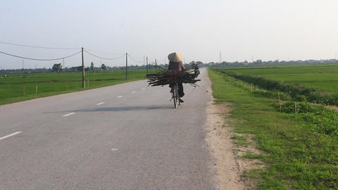 Asia person cycling on road Live Action