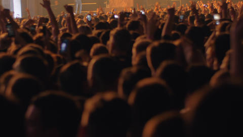 Crowd of fans enjoying concert of favourite music band Live Action