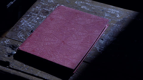 Red Notebook On Old Wooden Table. Dust Particles in the Air GIF