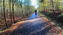 Autumn. Bicycle drive through the forest 영상물