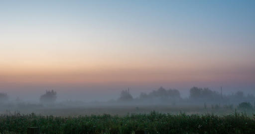 Dawn in a foggy field Live Action
