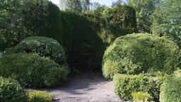 Topiary Shrub Garden and Garden Furniture Stock Video Footage
