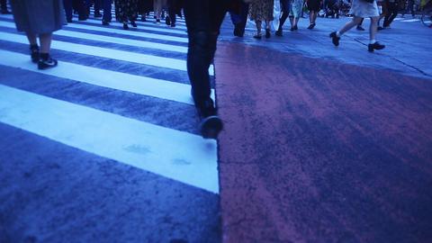 Walking crowd on the half horizontal line in Shibuya deep focus Live Action
