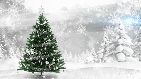 Christmas tree in winter scenery and falling snow Stock Video Footage