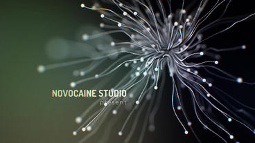 Organic Ident After Effects Template