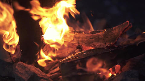 Amazing bonfire close up. Beautifully burning firewood at night in the forest Live Action