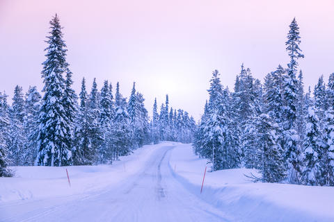 Winter Road through the Northern Forest Photo