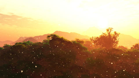 Beautfiul Sunset with Fire Flies over Lush Jungle 3D Animation Animation