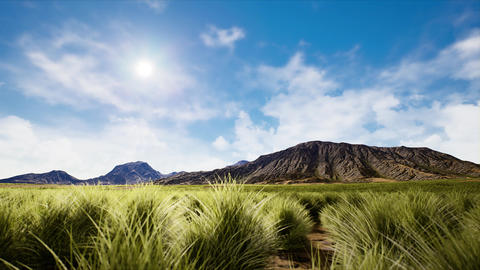 4K Static Shot of Semidesert Shurblands and Mountains 3D Animation Animation