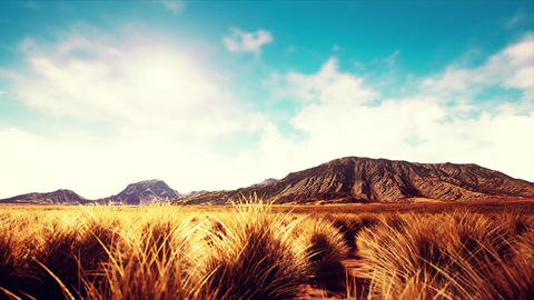 4K Static Shot of Semidesert Dry Grasslands and Mountains 3D Animation Animation
