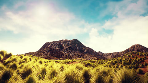 4K Shrublands Arid Landscape Camera Dolly 3D Animation Animation