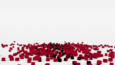 Flag of Albania created from 3d cubes in slow motion Animation