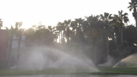 Irrigation system on a hotel lawn Live Action
