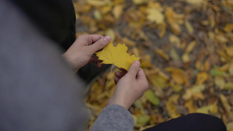 Man holding beautiful yellow leaf in his hands, thinking about past, nostalgia Live Action