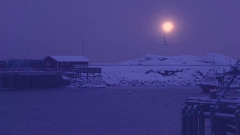 Evening Snowfall over the Winter Harbor. Slow Motion, Live Action