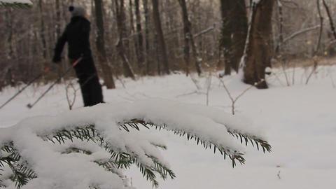 In the winter city park. Ski ramble 영상물