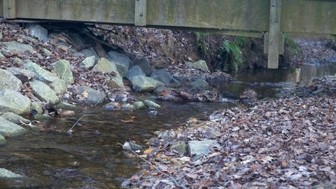 view of a small stream under a wooden bridge Footage