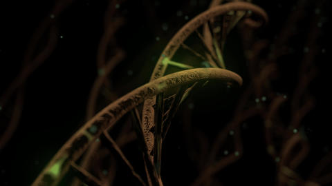 DNA spinning RNA double helix slow science electron microscope closeup dof 4K Live Action