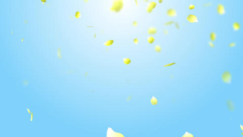 Petal rose yellow background sky CG動画