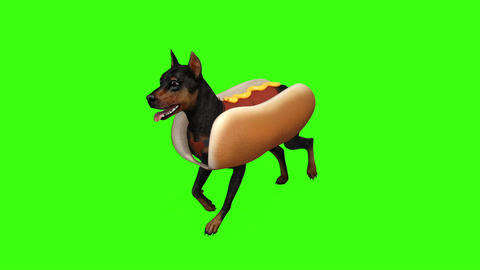 dog in hot dog costume runs GIF