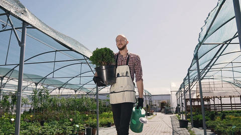 A gardener in a clutch shirt and a garden tool goes greenhouse to plant Footage