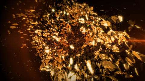 Golden Petals in Vortex Background 3 Animación