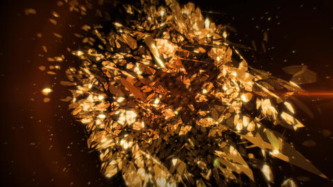 Golden Petals in Vortex Background 3 Stock Video Footage