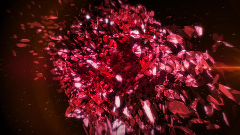 Red Petals in Vortex Background 3 Animation