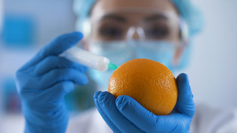 Laboratory expert filling fresh orange with chemical substance, cosmetology Live Action