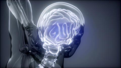 Head Pain Headache - Male Hurt Backbone Live Action